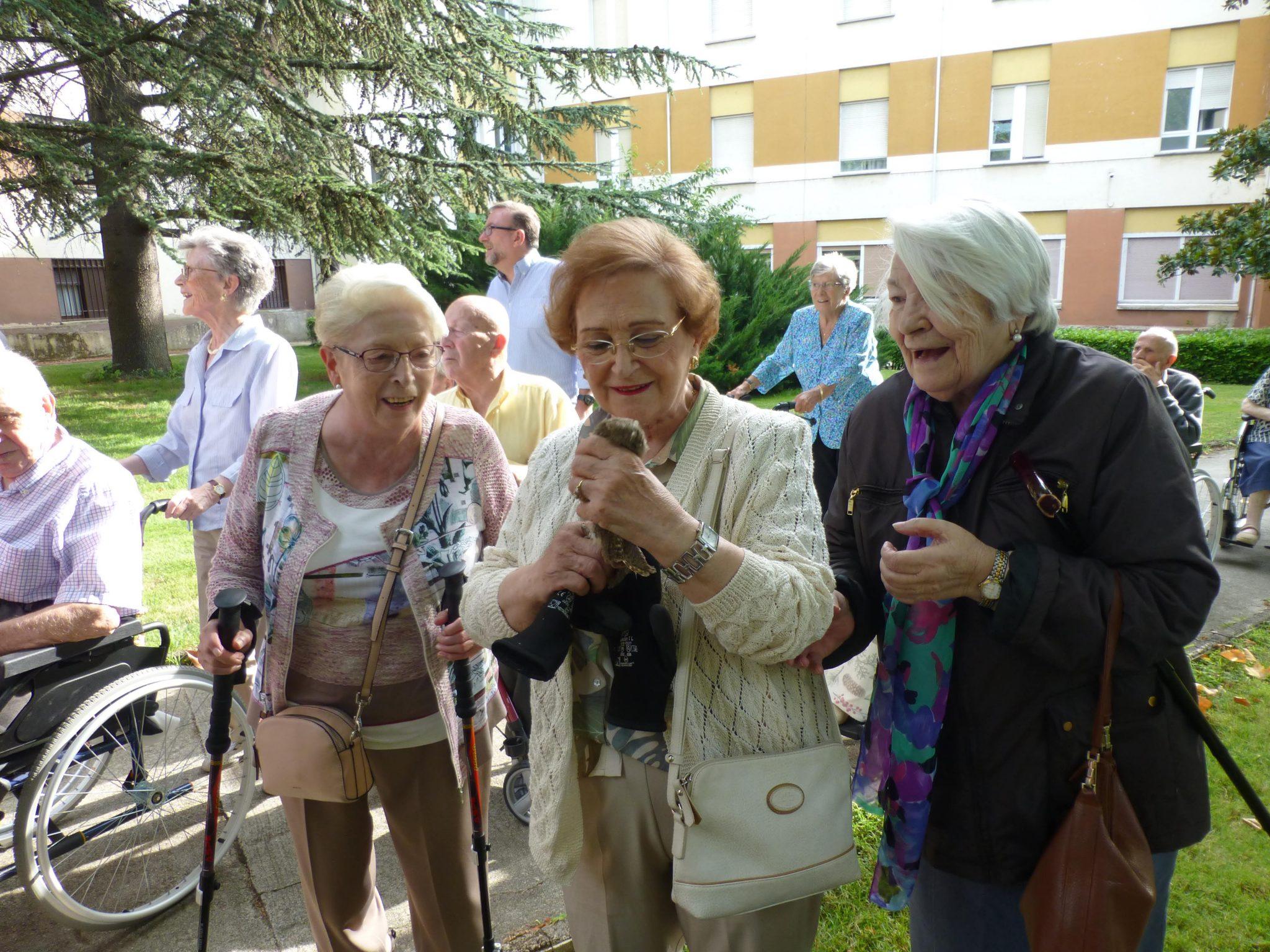 Suelta De Autillos En Pamplona Con La Colaboración De Residentes De La Casa De Misericordia Y La Residencia El Vergel